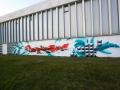 Graffiti-in-lens-2016-02
