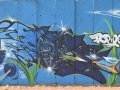 Graffiti-in-lens-2016-22