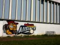 Graffiti - Fresque Baseball - Behal