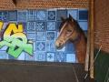 Fresque-Graffiti-Givenchy-En-Gohelle-ecole-02