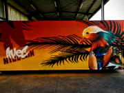 Graffeur-dans-le-nord-035