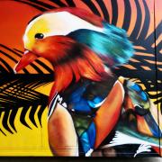 Graffeur-dans-le-nord-036
