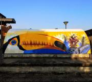Graffeur-dans-le-nord-019