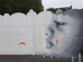 N004-Graffiti-a-Lille-et-environs