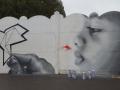 N012-Graffiti-a-Lille-et-environs