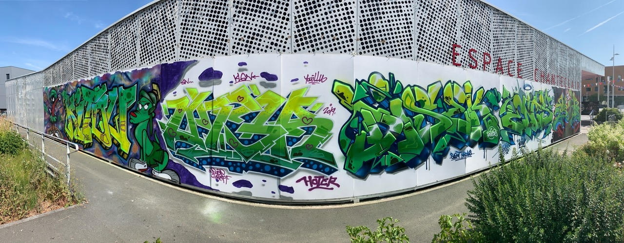 Demonstration-de-graffiti-008
