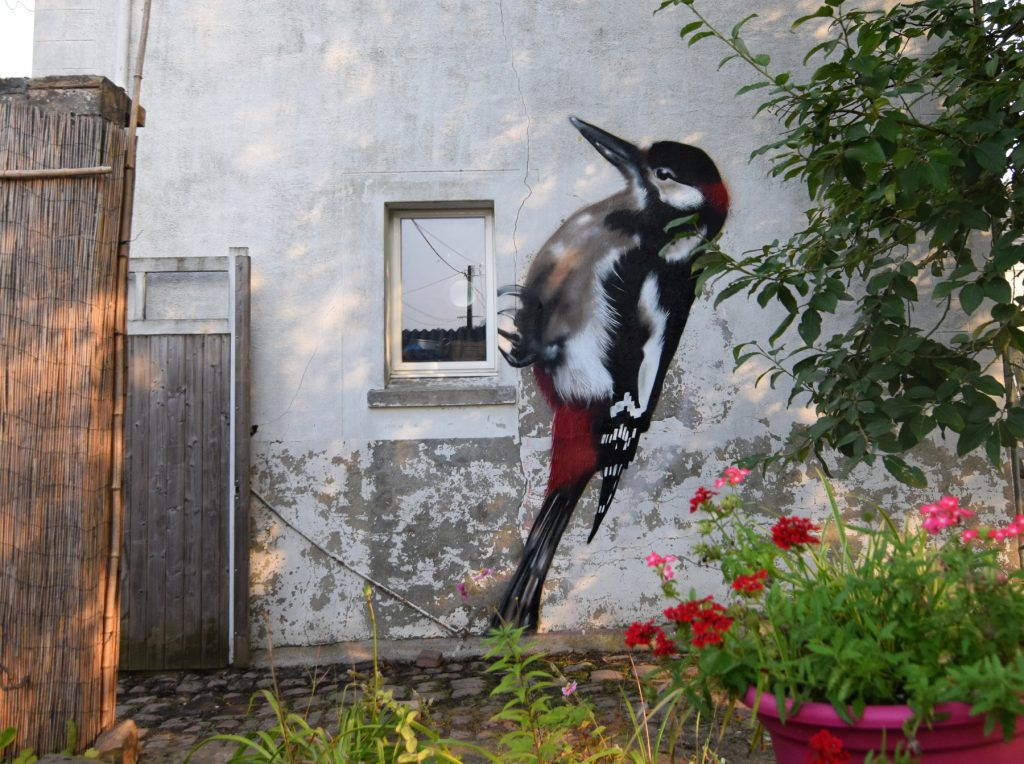 Graffiti d'oiseau Pic Epeiche à Givenchy en Gohelle
