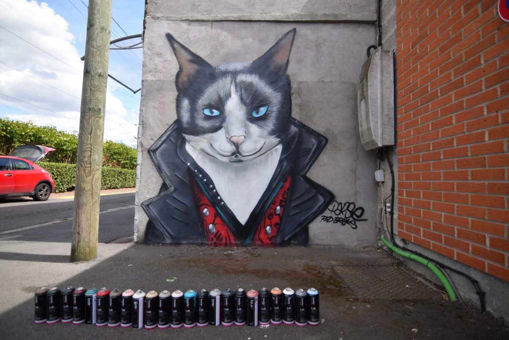 Street-art Chat à Billy Montigny
