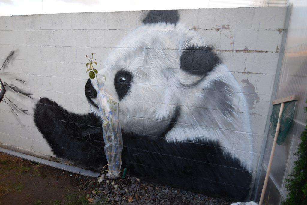 Graffiti de Panda à Mazingarbe
