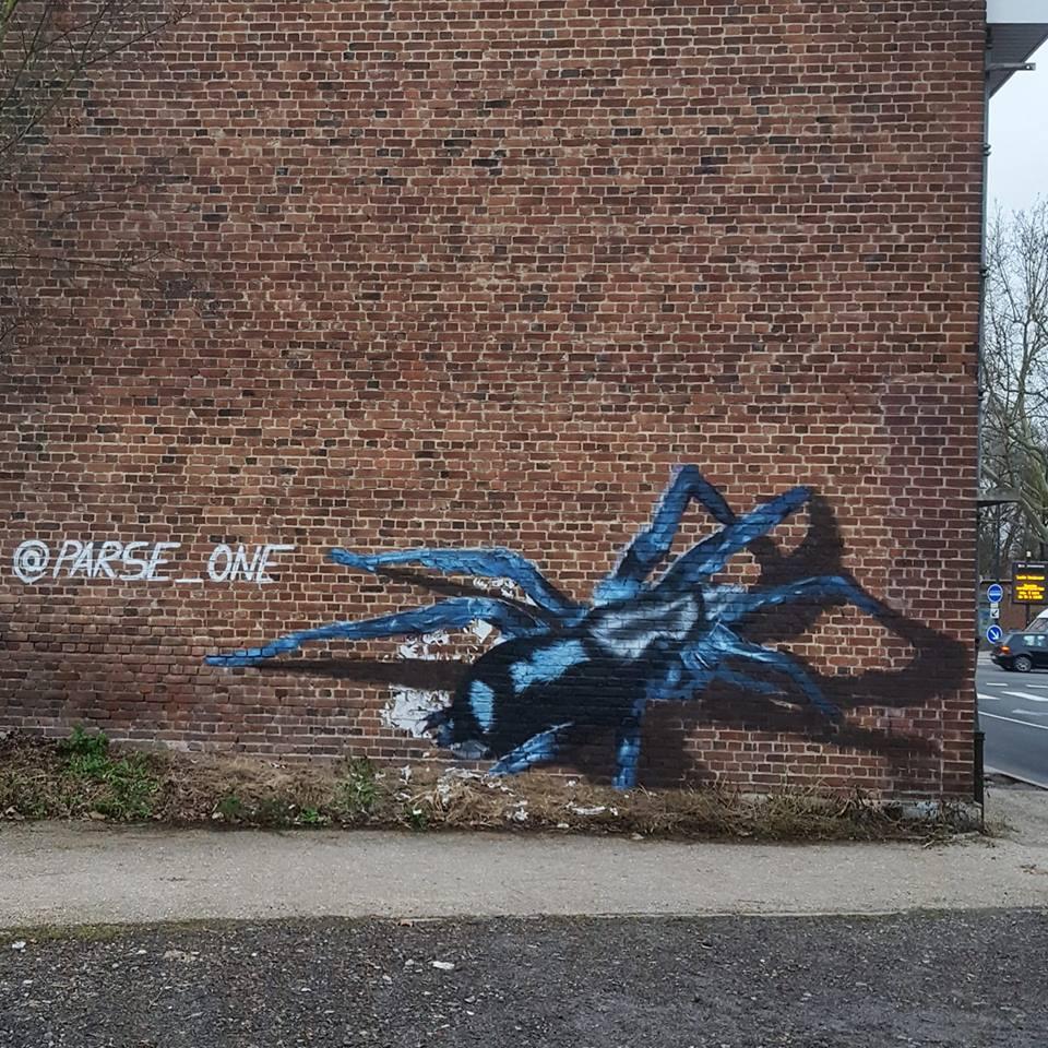 Araignée Trompe l'oeil street-art Lens