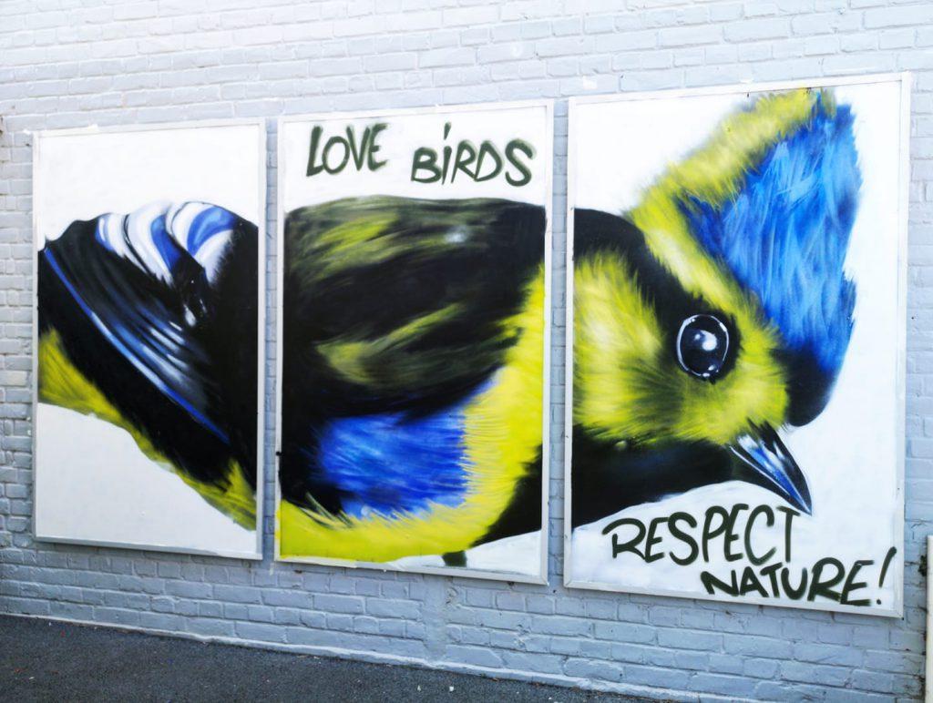 Fresque oiseau graff aire-sur-la-lys