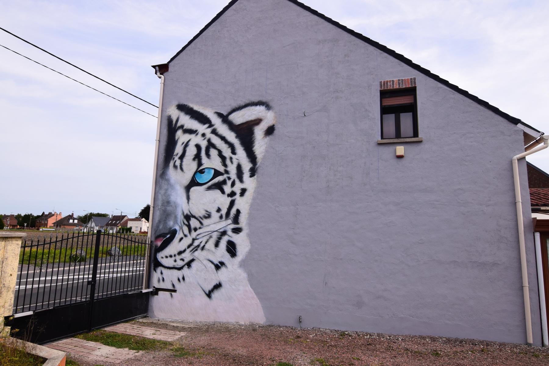 Notre graffeur à Douai peint un tigre géant à Abscon