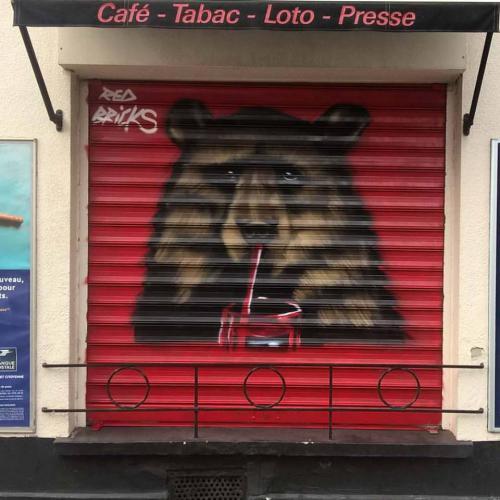 Ours en street-art sur des volets à Lens