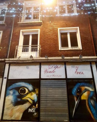 Deux fresques d'oiseaux en street-art vitrines de Lens rue de Paris