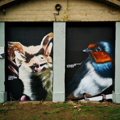 20200615-023 - Fresque theme oiseaux et chauve souris