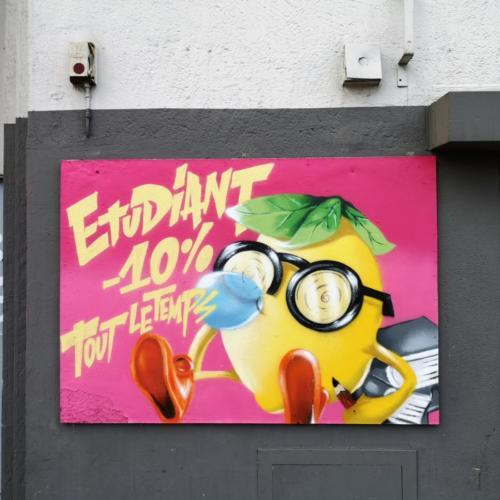 fresque-street-art-nord-021